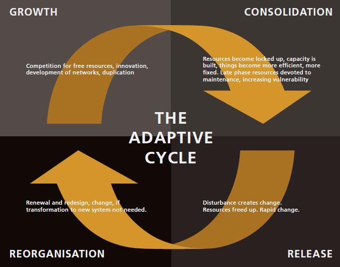 adaptive cycle